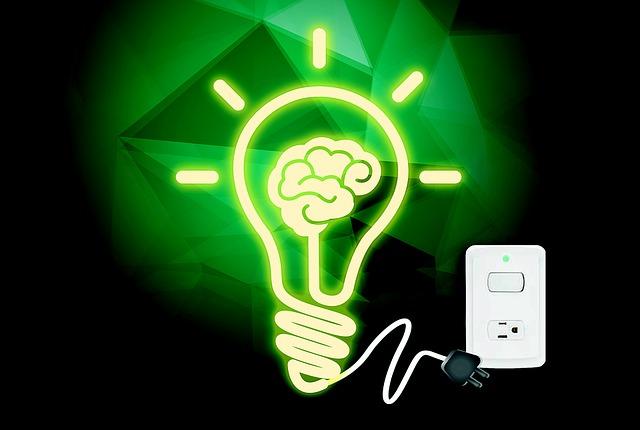 Program dla elektryka