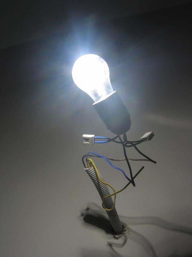 Program dla elektryków