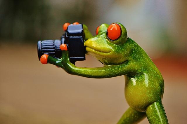 Program dla fotografów