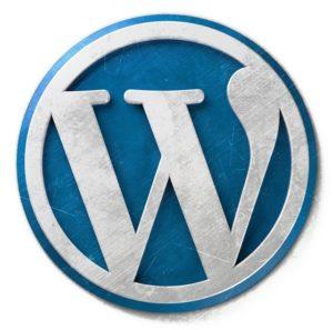strona blog wordpress